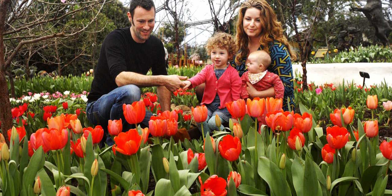 14 Mother's Day deals on eating out and playing out in Bristol this weekend! (Mar 10 & 11)
