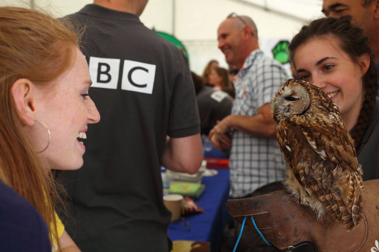 Dinosaurs are coming to Bristol! Free festival of nature starts this Thursday June 8….